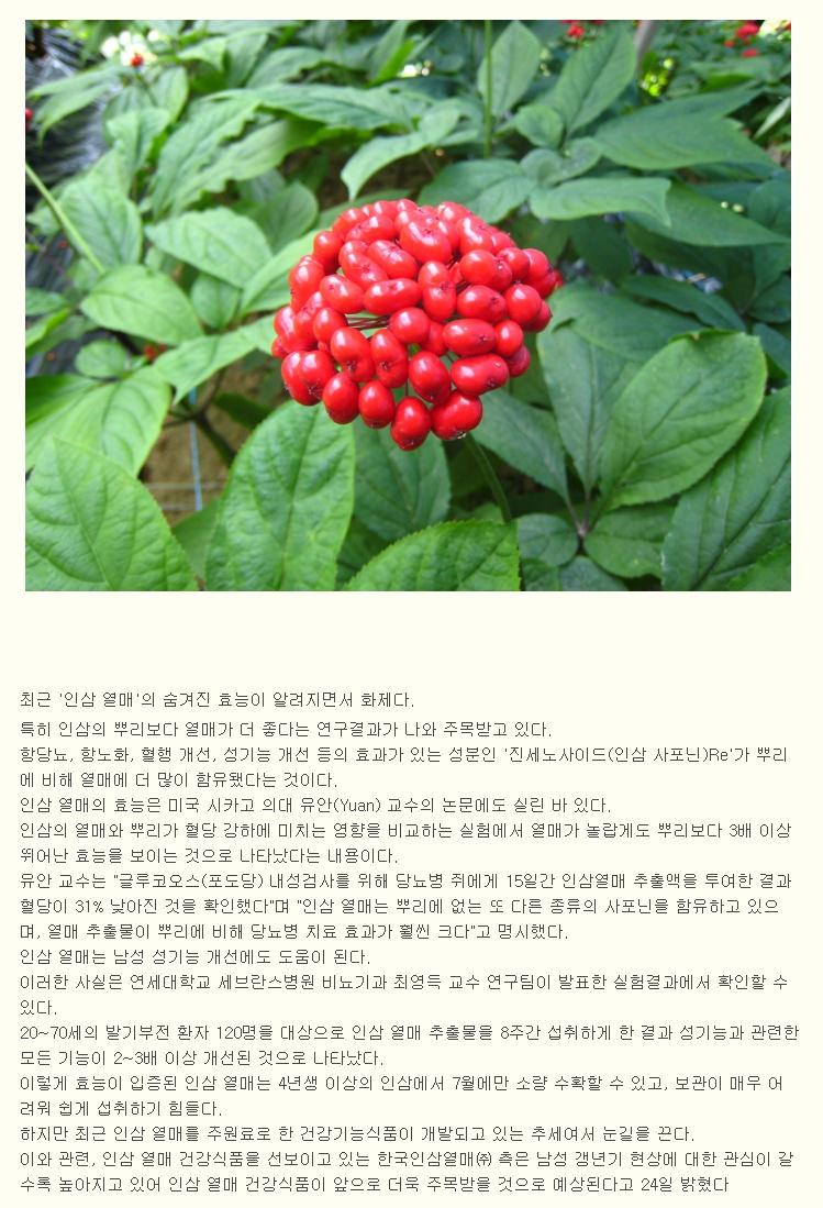 daum_net_20141015_111049.jpg